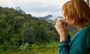 4 uralte Heilmittel, die deinen Geist und Körper heilen können